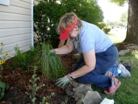 Barb Sommers planting native grasses