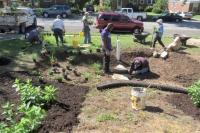 Preparing the rain garden