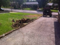 Pulling ash stump