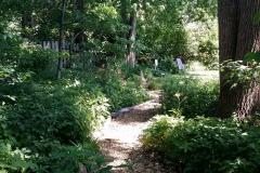 20160618_yard10_native_garden_tour_01 - Edited