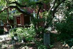 20160618_yard8_native_garden_tour_01 - Edited