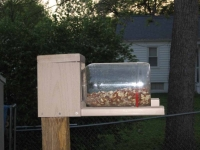 Squirrel feeder - side