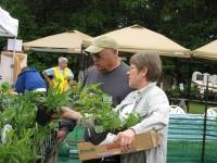 native-plant-sale-2012