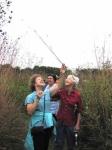 Examining prairie grasses