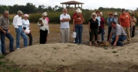 Sand pile plantings