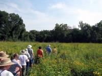 Litzsinger Road Ecology Center