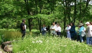 Students at the Native Plant School at the Shaw Nature Reserve