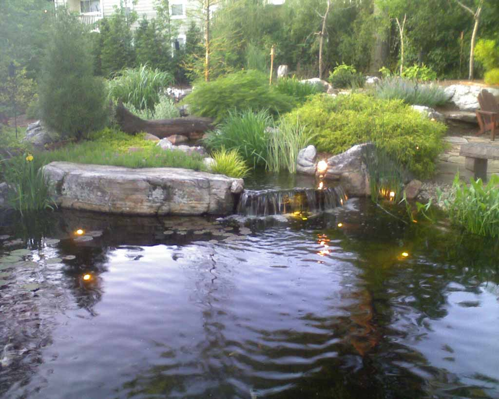 Landscape Design For Small Yards