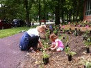 Teacher and student working together to plant native plants at Principia School