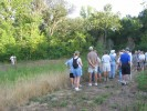 Wild Ones members overlooking the wetland area at the University of Missouri St. Louis