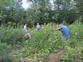 Wild Ones members dig prairie plants