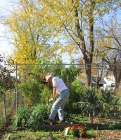 Ed Schmidt digging