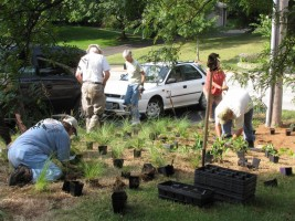 Wild Ones volunteers at the 2010 Landscape Challenge in Creve Coeur