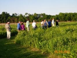 Touring the Heartland Prairie, near Alton, IL