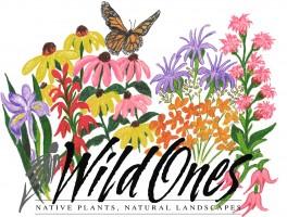 Wild for Monarchs logo