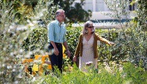 Southwestern homeowners view their drought-tolerant yard