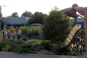 Wild Ones at the Brightside St. Louis garden