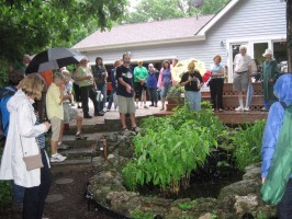 Dave Tylka talks to Wild Ones about his water feature with native plants