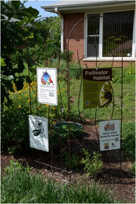Signs about yard certification as native plant habitat
