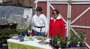 Two people at table with native plant resources