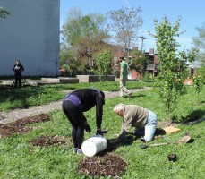 April, 2015 - Marilyn Chryst helping plant one of our grant gardens
