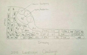 Planned layout of the 2015 Landscape Challenge planting