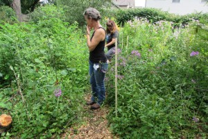 Touring a yard with native plants at the July 2015 Wild Ones meeting