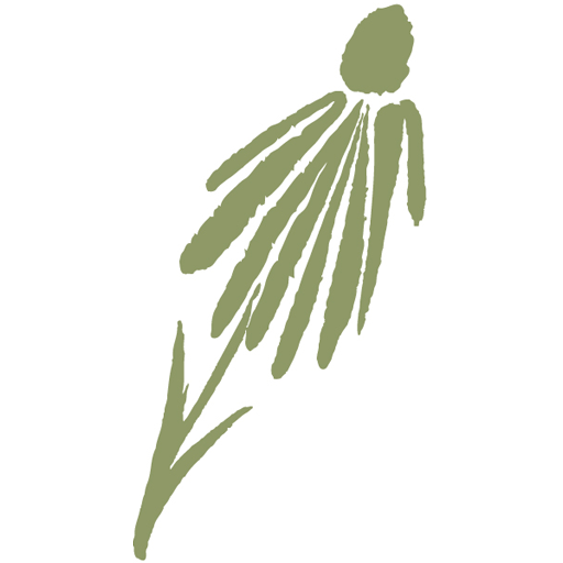 Wild Ones coneflower logo