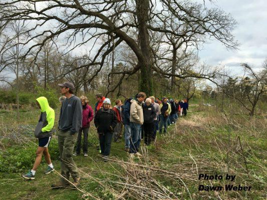 Attendees following Josh around Deer Lake Savanna