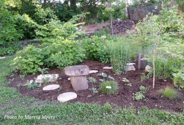 A small portion of the Weber yard including stepping stones, recycled tree seating, metal plant tags and, of course, native plants