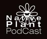 native-plant-podcast-logo