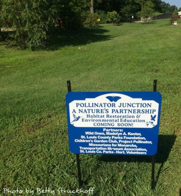 Blue and White sign Pollinator Junction with green grass