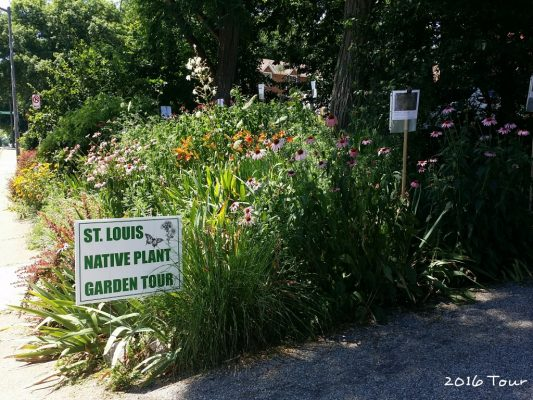 "Garden with sign, ""St. Louis Native Plant Garden Tour"""