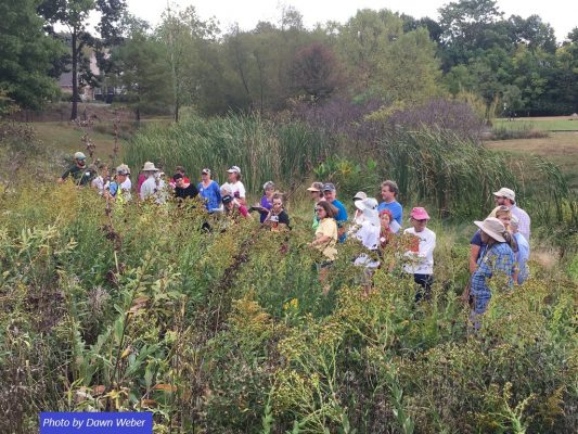 Group of people in native plant garden