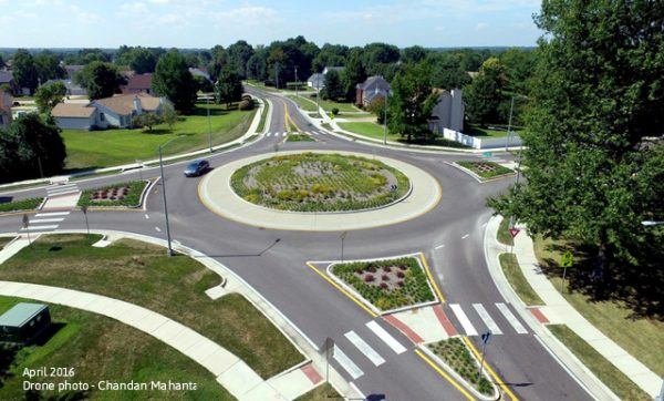 Drone view of the native plants in the roundabout